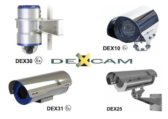 Collage DEXCAM III.png